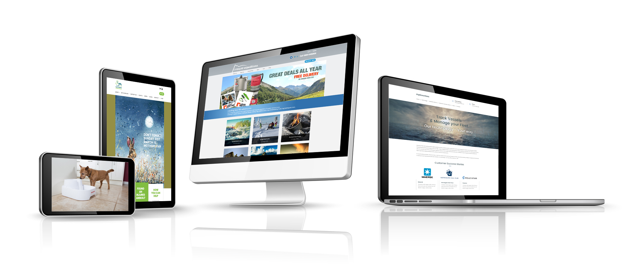 Web design Somerset